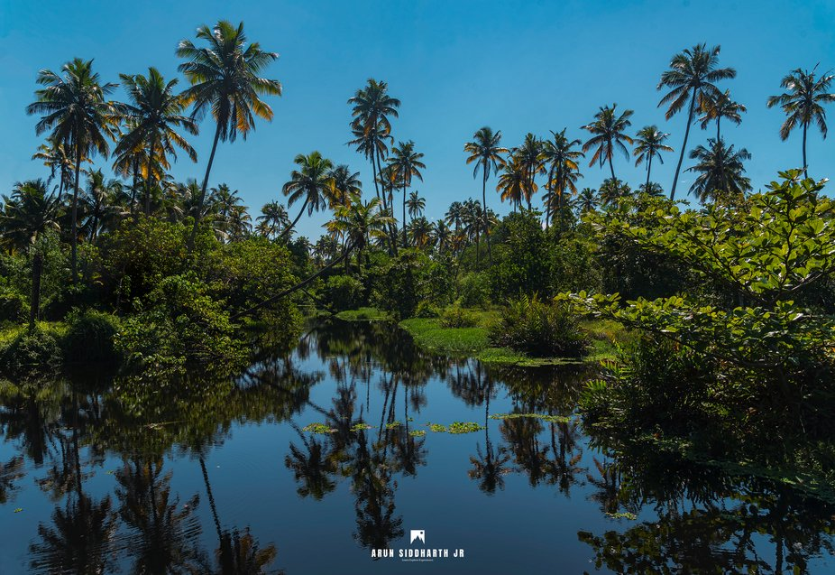 When comes to Nature Landscapes Kerala hold its own uniqueness. The place is clean, healthy, un...