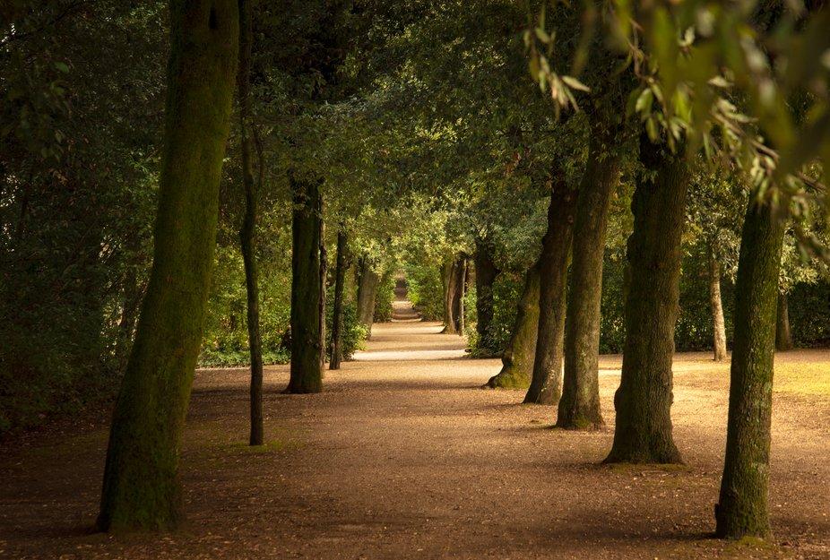 DSC_9433-Boboli-Garden