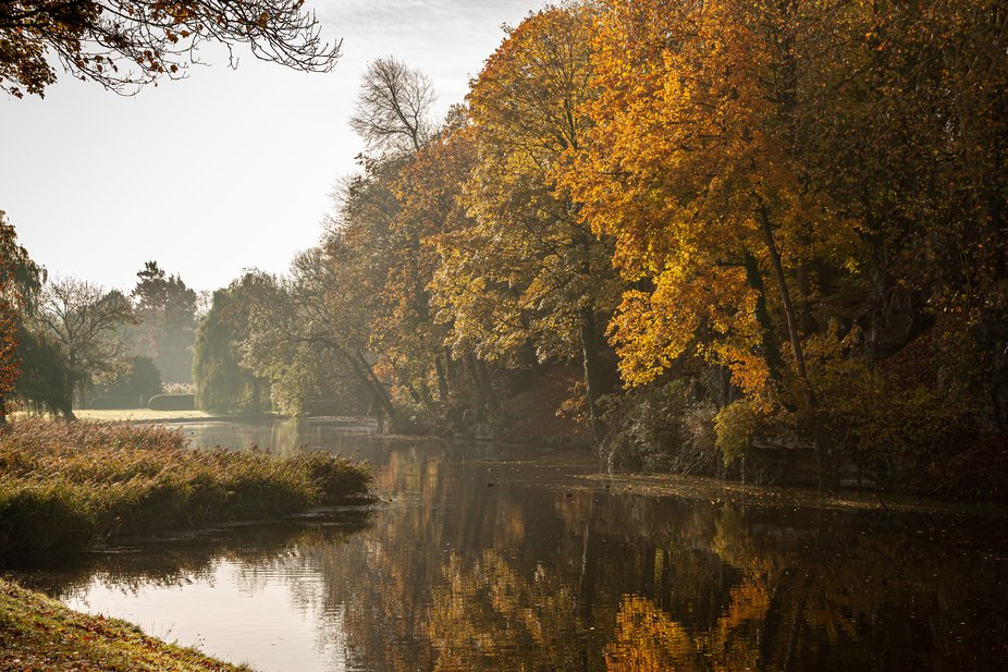 Autumn colors in Brussels