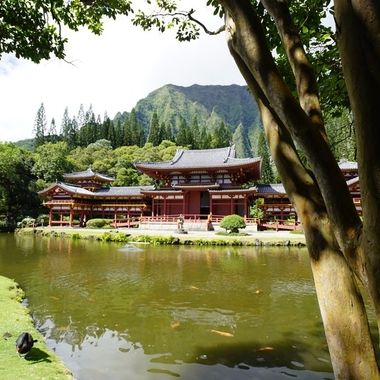 Byodo-In-Temple in Windward, Oahu
