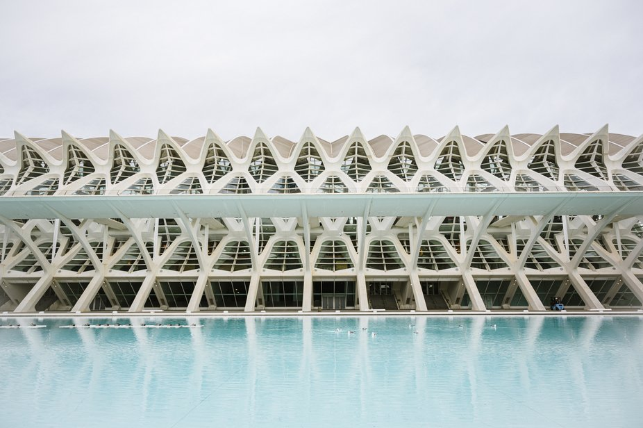 The spectacular building designed by Santiago Calatrava contains over 26,000 square metres of exh...
