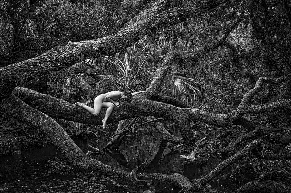 Fallen tree with model Mikki Marvel