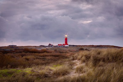 A stormy day in Texel