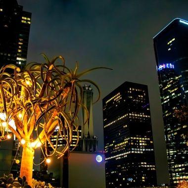 LA by night down town
