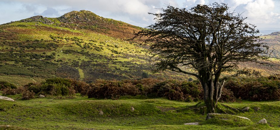 I spend a lot of time walking around Dartmoor National Park. I'm often there for a short...