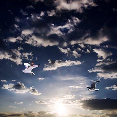 Wings NW