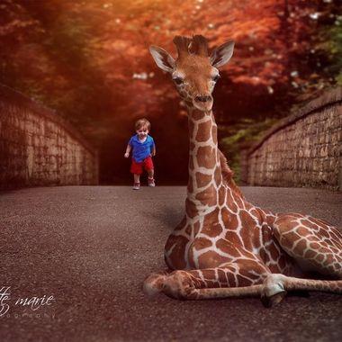 {Jax} Meets Giraffe