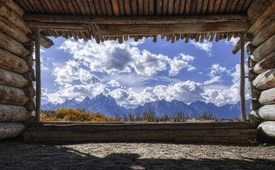 Window to Nature