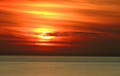 The sky in bright colors. Sunset over the Gulf of Finland. Saint-Petersburg. Photo 04.