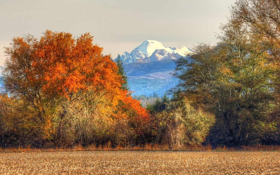 Mount Baker Fall