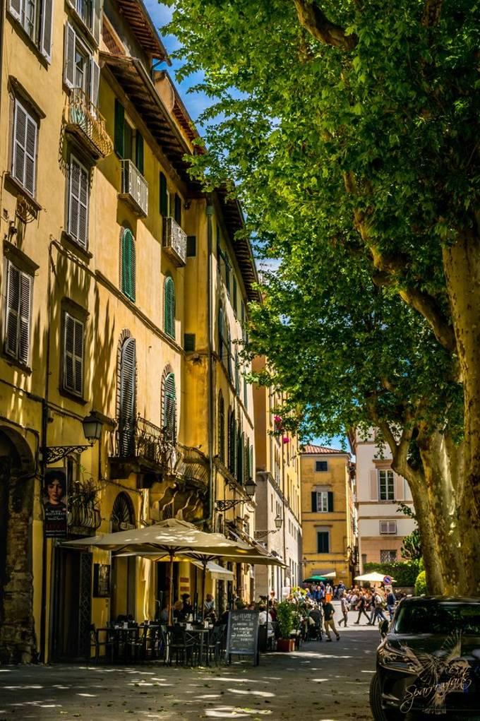 Sidewalk Gelateria Lucca