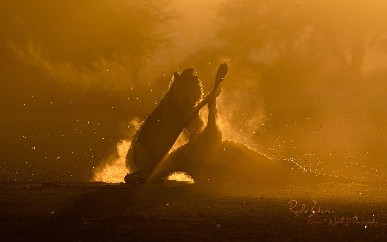 Picture Haze Photo Contest Winner
