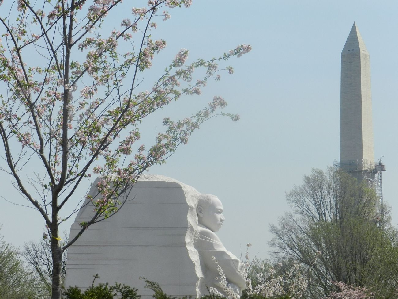 Martin Luther King Jr. Statue from a Distance