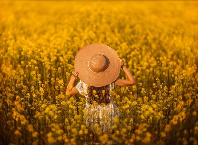 Golden fields by mariamercedeszabala - Covers Photo Contest Volume7