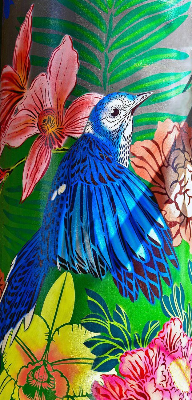 Street Art - Auckland, New Zealand