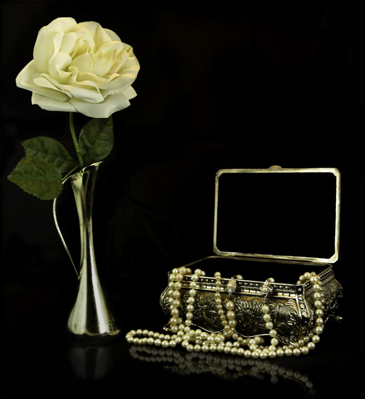 still life rose and pearls