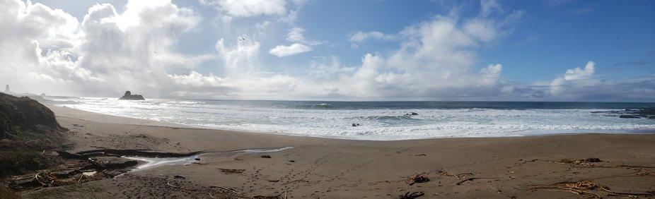 At elephant seal beach.