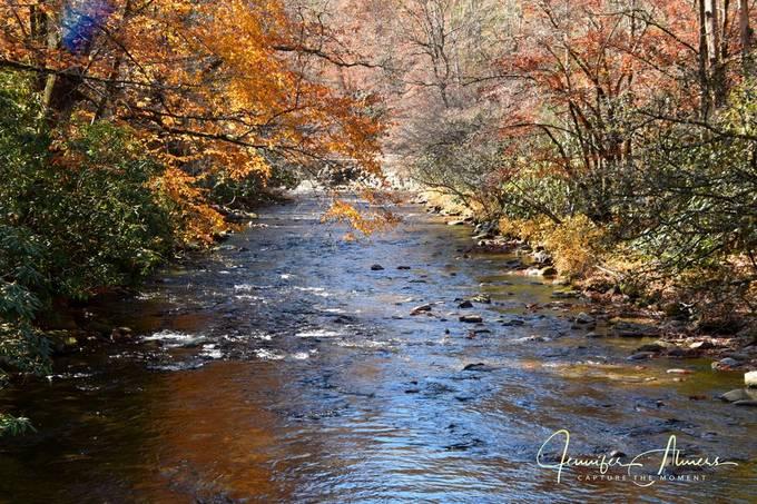 NC Creek in the Fall