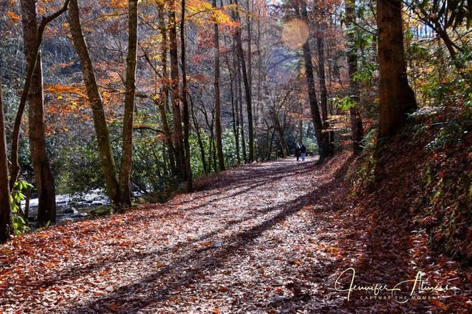 Hiking the Deep Creek Trail