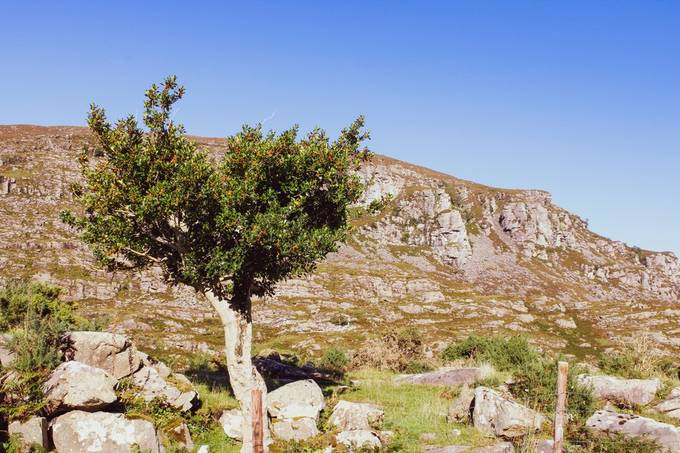 Beautiful sunny day at gap of dunloe in Kerry Ireland