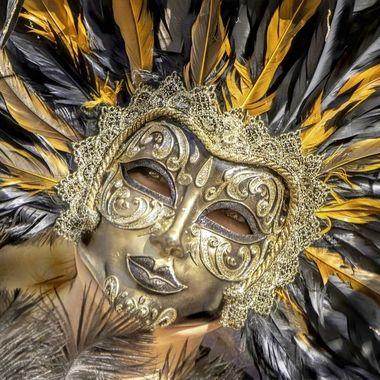 Haute Couture Ialia Feathers