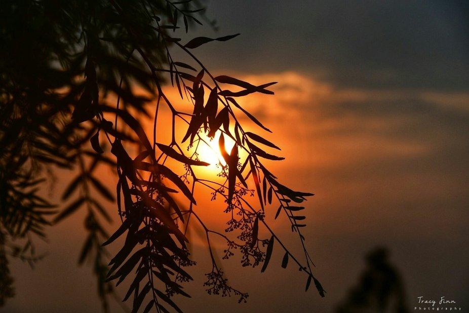 Hiding sun