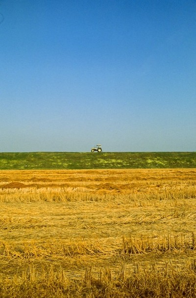 Minimal landscape with tractor