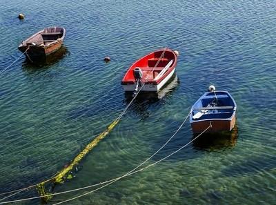 A dónde irá mi barca