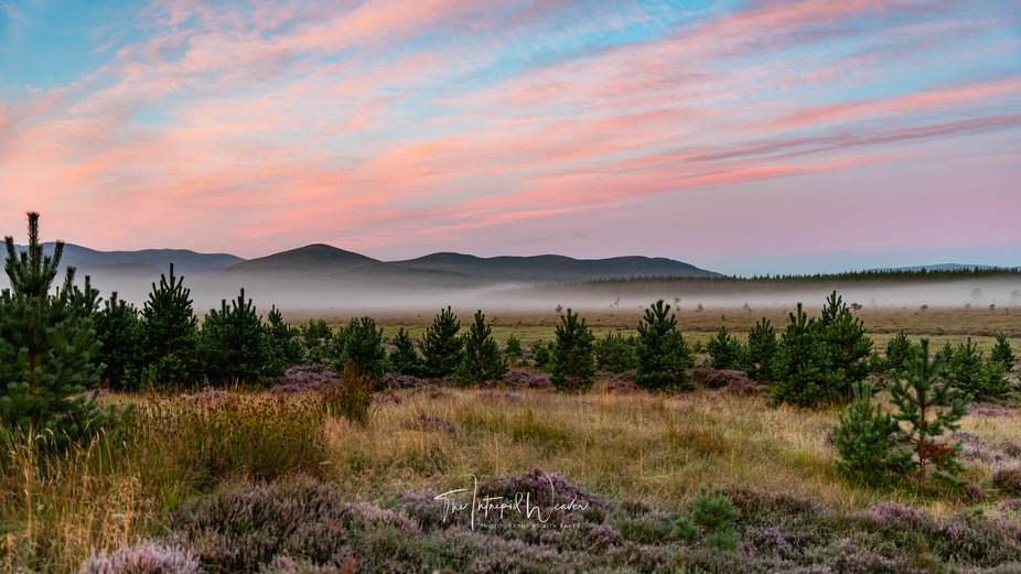 Foggy Morning in the Cairngorns