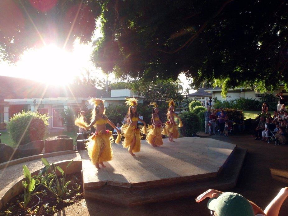 Luau Girls