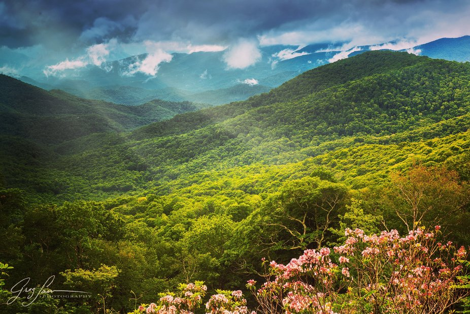 Perfect end to a lackluster day chasing the light up and down the Blue Ridge Parkway. Entire wee...
