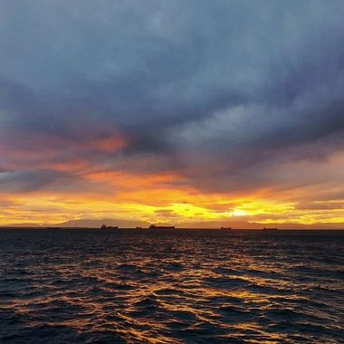 today's capture in my city's harbor which has one of the most beautiful sunsets