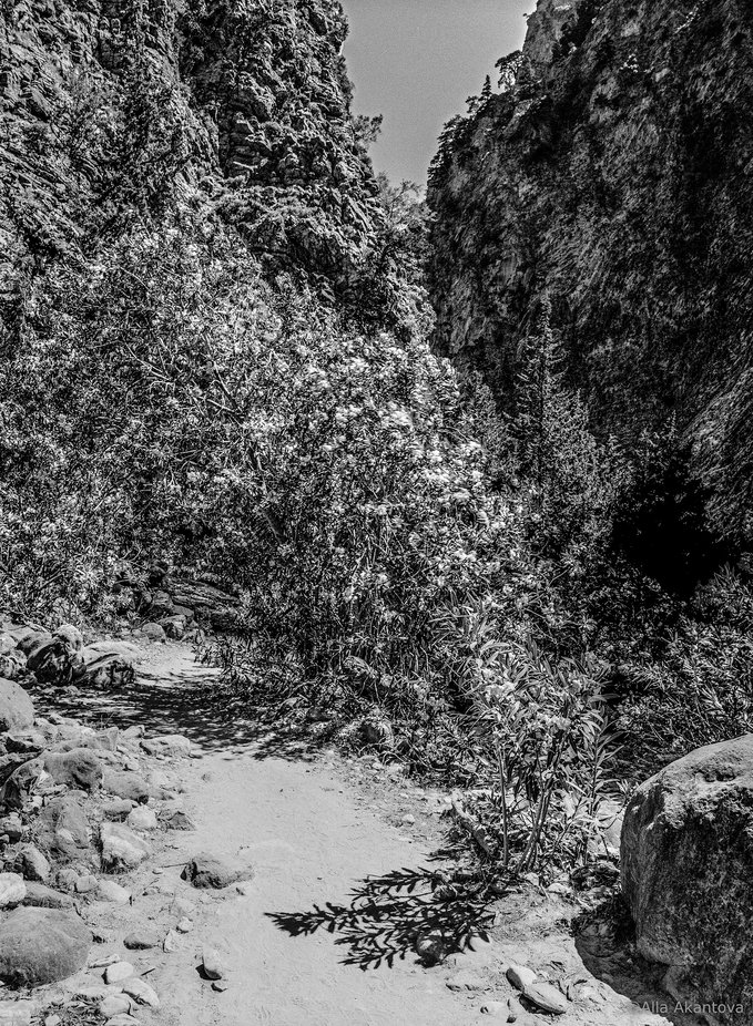 Shades Of Gorges_2