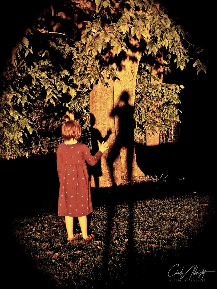 """Sunlight on the """"Shadow Tree"""" can bring about some strange encounters!"""
