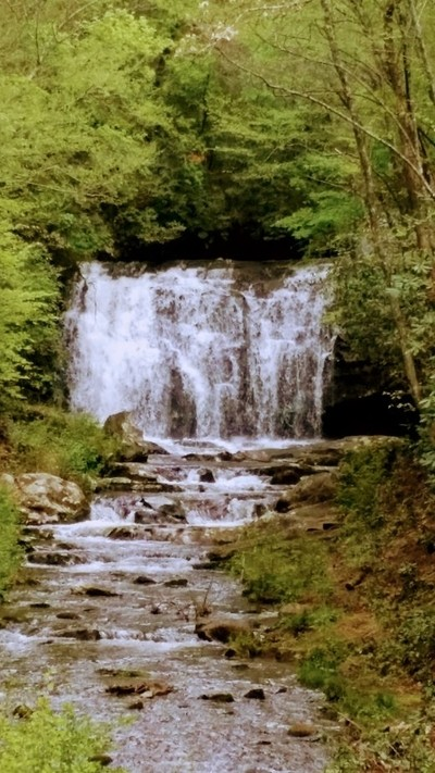 Beautiful little waterfall in the Smokey Mountains of Tennessee.
