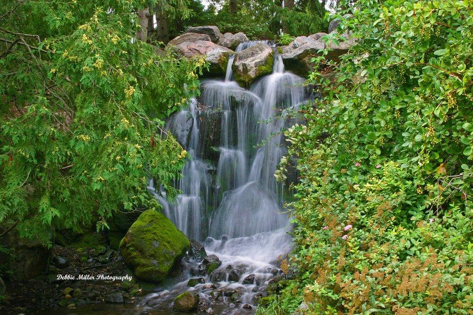 Arboretum Waterfalls