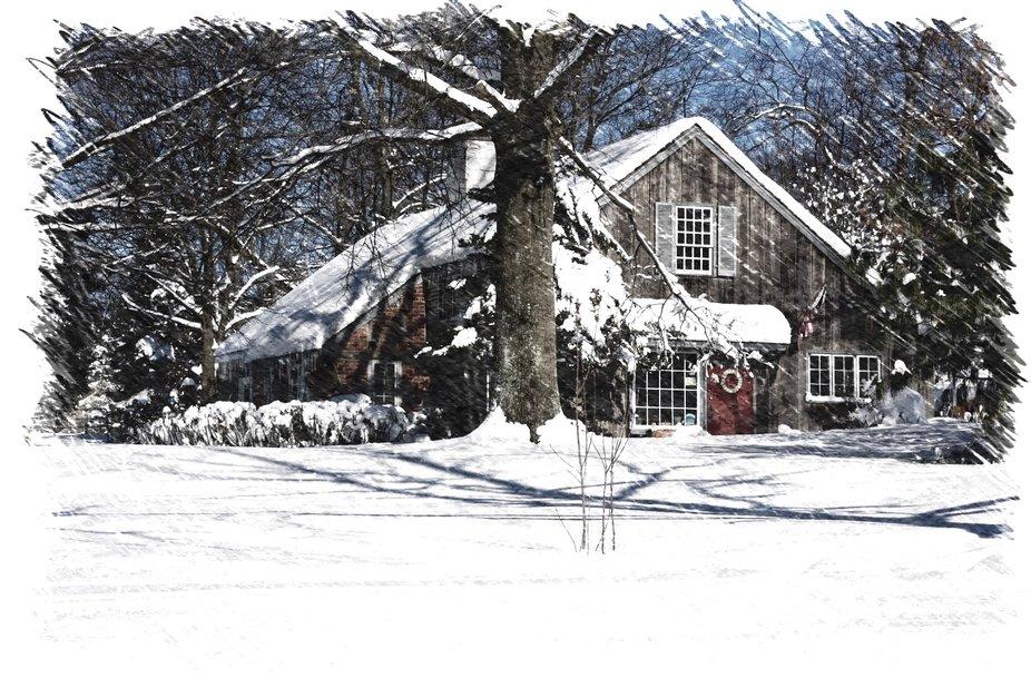 After-the-BIG-Snow-022.jpeg