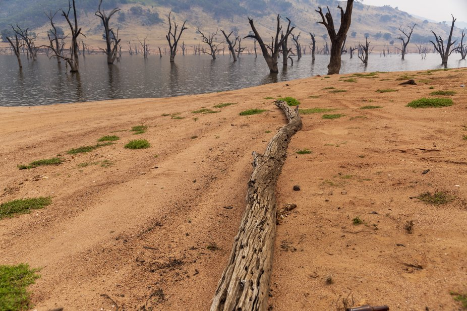 While you are driving along the Murray River, why not try crossing at the The Spirit of Wymah, a ...