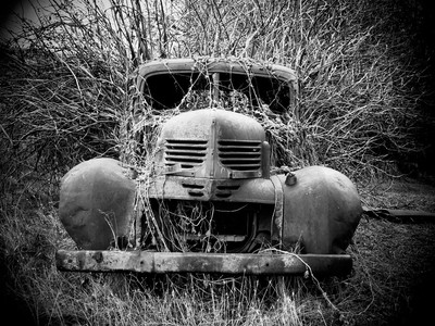Weeds overtaking old truck