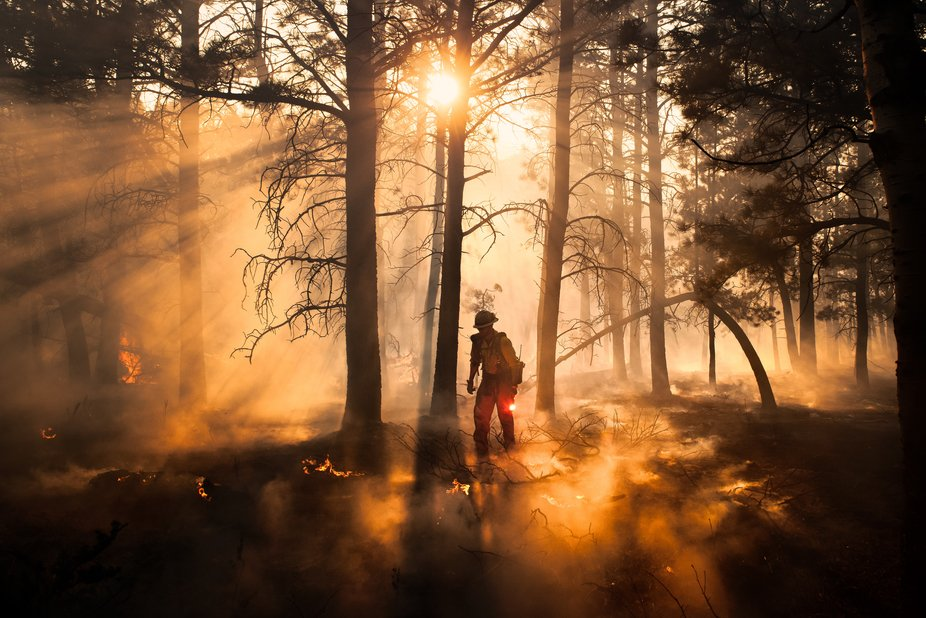 A member of a hotshot crew moves through the smoke of a wildfire with a lit fusee flare in hand. ...