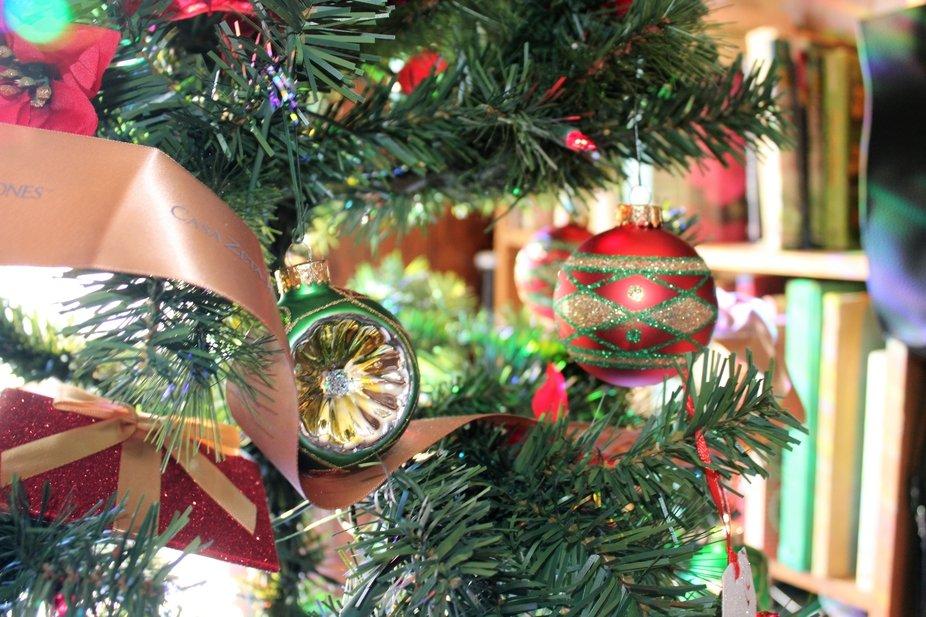CHRISTMAS TREE CLOSEUP