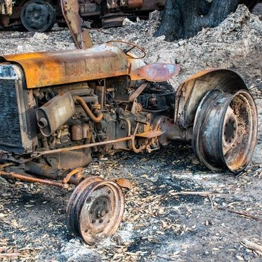 The bushfires spared nothing #bushfiresaustralia #sparrowfartss https://www.sparrowfarts.com/
