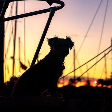 Sun Set Hawaii