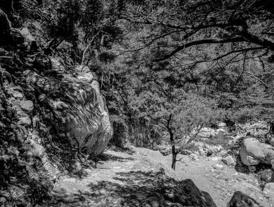 Stones Of Gorges 8