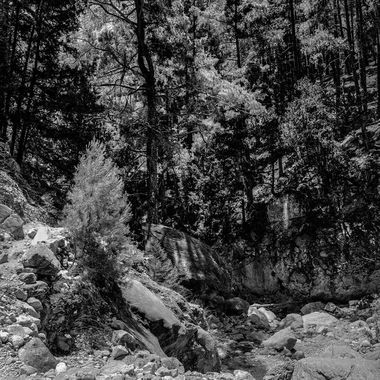 Shades Of Gorges 9