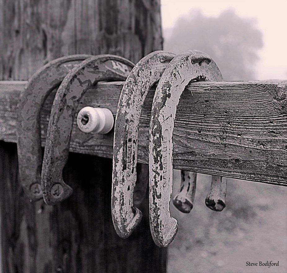 HorseShoe Dawn.JPG