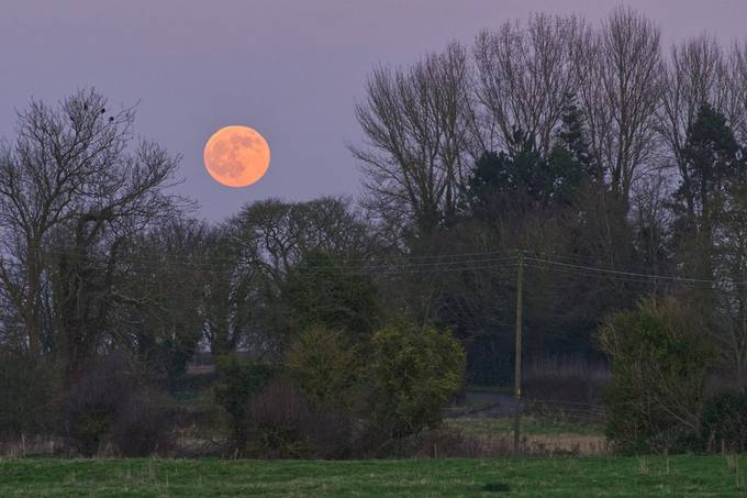 Wolf Moon January 10th 2020