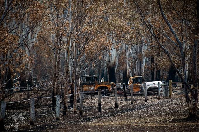 Another capture on my brief tour of a fire ravaged area, off in the distance these two Fords failed to survive.  The colours of the burnt bushland are intriguing adding surreal colour.