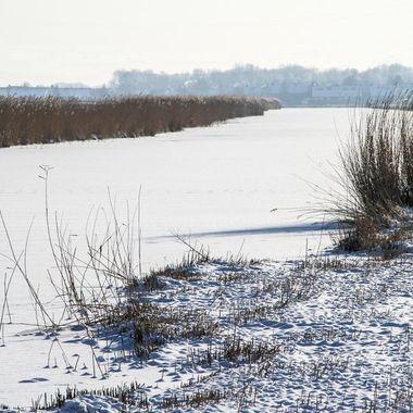 Frozen canal in polder, Purmerend, Netherlands