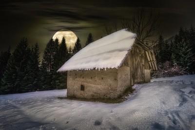 Forgotten in the moonlight